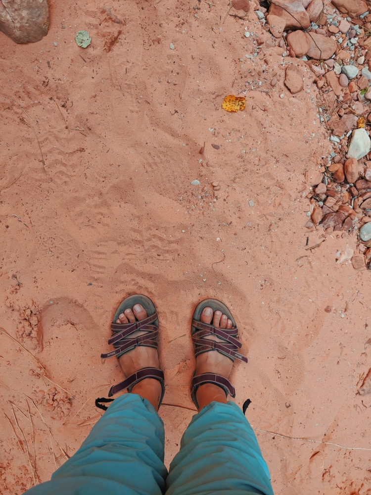 Photo of sandals in red sand